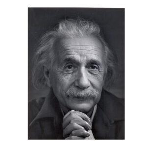 تابلو شاسی طرح آلبرت انیشتین
