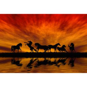تابلو شاسی سری زیباترین عکس های جهان طرح اسب های زیبا کد 146