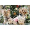 تابلو شاسی سری حیوانات دوست داشتنی طرح سگ خوش تیپ کد 155