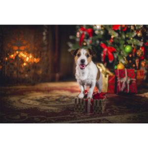 تابلو شاسی سری حیوانات دوست داشتنی طرح سگ خوش تیپ کد 160