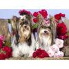 تابلو شاسی سری حیوانات دوست داشتنی طرح سگ های خوش تیپ کد 164