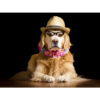 تابلو شاسی سری حیوانات دوست داشتنی طرح سک خوش تیپ کد 175