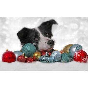 تابلو شاسی سری حیوانات دوست داشتنی طرح سگ خوش تیپ کد 184